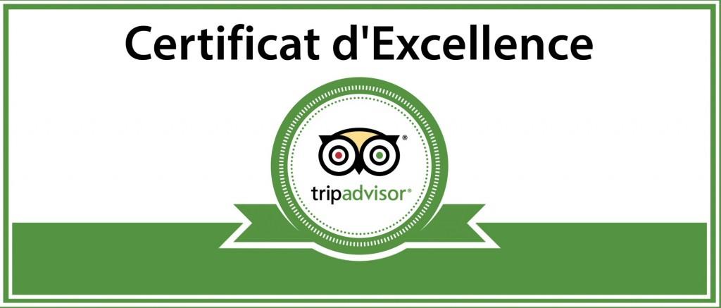 tripadvisor-excellence-2-1024x437