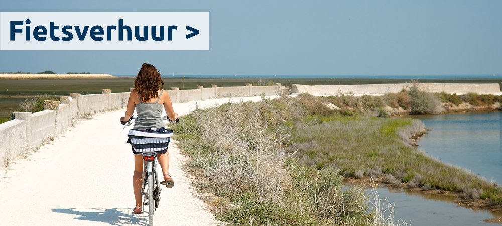 location-de-velos-ile-de-re-fietsverhuur1