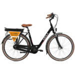 Electric Dutch bike
